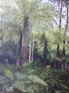 Leura rainforest
